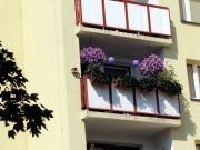 Balkony, które cieszą oko - Zbigniew Kwiatkowski - I miejsce