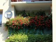Balkony, które cieszą oko - Krystyna Martyniuk - II miejsce