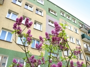Osiedle Hutnik w Głogowie